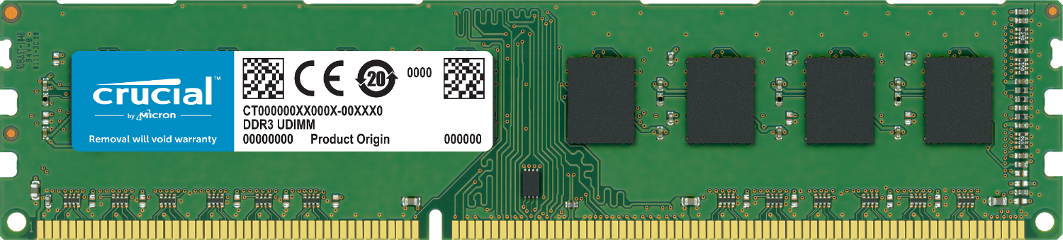 Crucial RAM memory for a computer isolated on a white background